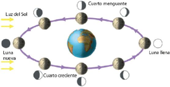 Cómo utilizar la energía de las fases lunares - Numerologia ...