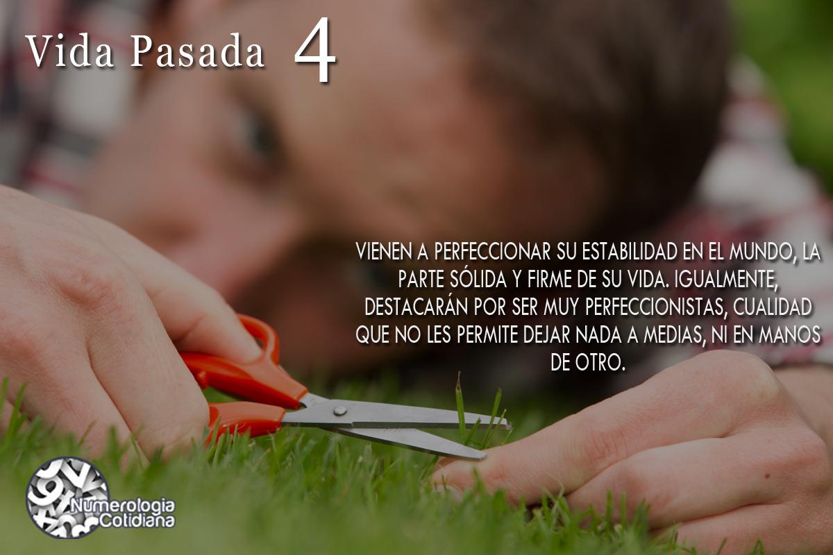 VIDASPASADAS4
