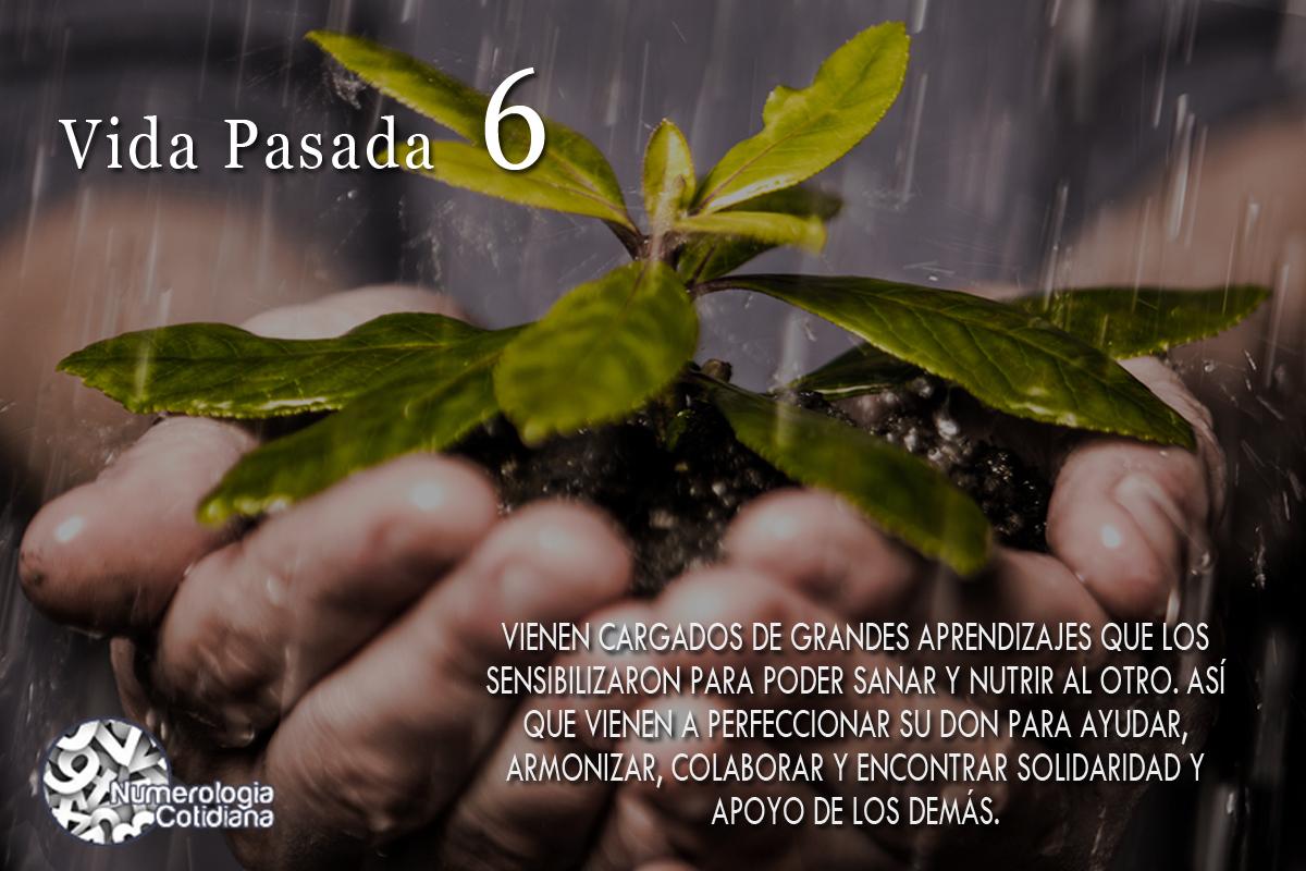 VIDASPASADAS6