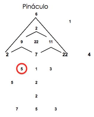 PINACULOMETA5