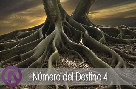 numero-destino4