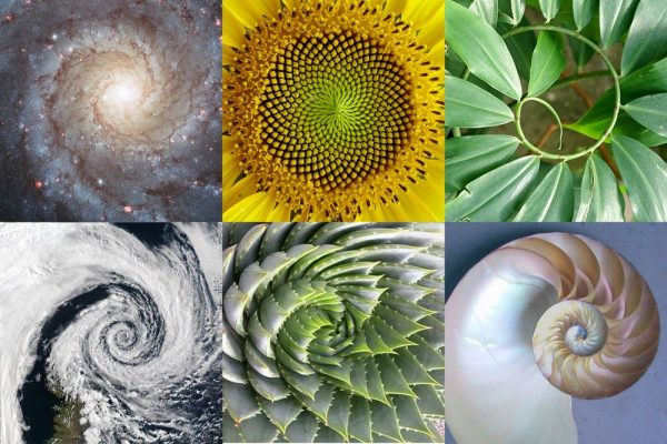 the-golden-ratio-600x400